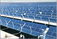 Solar_trough_solarfield