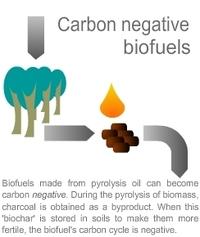 Biopact_carbon_negative_biofuels_3