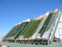 Greenfuels_bioreactors_at_aps