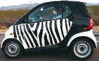 Zap_zebra_200